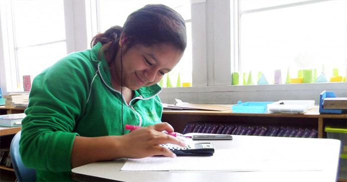 Bridges Student